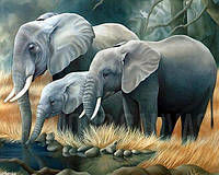 """Алмазная вышивка (набор) - """"Семья слонов"""", фото 1"""