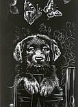 Гравюра панорама 'Собака' Серебро (ГР-В2-02-08с), фото 3