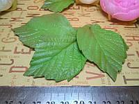 Лист розы 5-6 см, фото 1