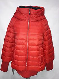 Куртка евро-зима 075 красная