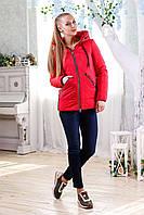 Женская демисезонная красная куртка  В-1091 Лаке Тон 76 44-58 размеры