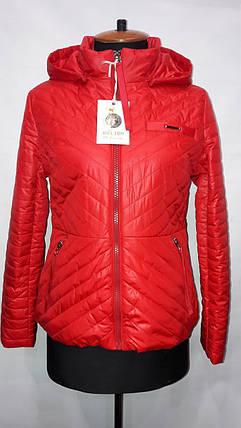 """""""button""""-демісезонна куртка 60-633, фото 2"""