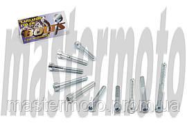 Болты крышки вариатора под шестигранник 4T GY6 125/150