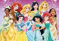Ляльки Принцеси Дісней (Walt Disney)