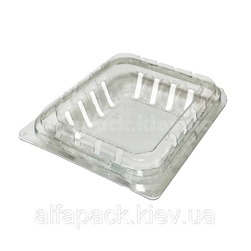 Лоток пластиковый для ягод 130х112х28 мм