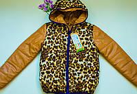 Куртка демисезон на девочку (рост 134 см)