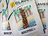 Семена томата черри МИНОПРИО F1, 250 семян, фото 5