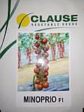 Семена томата черри МИНОПРИО F1, 250 семян, фото 7