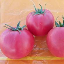 Насіння томату Хапинет (Хеппинет) F1 (1000 сем.) Syngenta