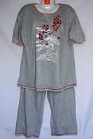 Женская котоновая пижама БАТАЛ оптом со склада в Одессе.