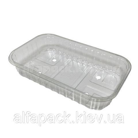 Лоток пластиковый для ягод 186х114х35 мм