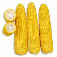 Семена кукурузы сахарной Добрыня F1 (Dobrynya F1) 2 500 сем.