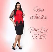 Женская одежда больших размеров - обновление коллекции!