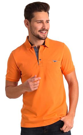 Оранжевая поло POLO 1804-5, фото 2