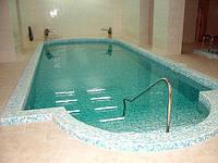 """Поручень в бассейн и два водопада """"Кобра"""""""
