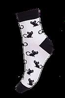 Носки демисезонные с рисунком 17В216К Мисюренко р 35-37