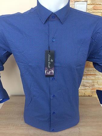 Рубашка Tonelly, фото 2