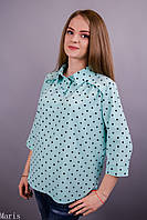 Стильная блузка Бьянка