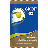 Фунгициды препараты от болезней растений Скор 2 мл