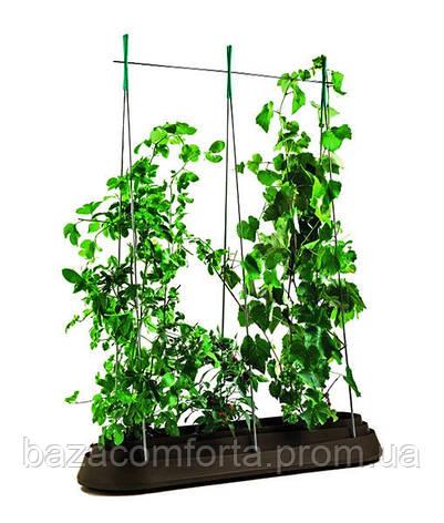 Грядка для растений G-Row, коричневая, фото 2