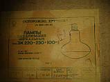Лампа ЗК 220-230-100-1 Е27, фото 2