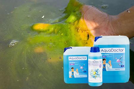 борьба с водорослями в бассейне