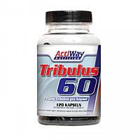 Трибулус TRIBULUS-60 120 капсул