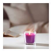 СИНЛИГ Ароматическая свеча в стакане, сиреневое цветение, сиреневый, 7,5 см 00236357 IKEA, ИКЕА, SINNLIG