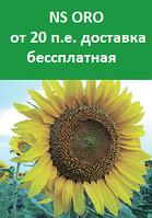 Семена подсолнечника  NS ORO Стандарт