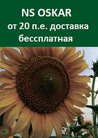 Семена подсолнечника  NS OSKAR Стандарт