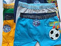 """Трусики-шорты для мальчика """"мяч"""", размер ,6-7"""
