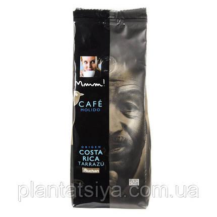 Кофе Cafe Molido Costa Rica Tarrazu - молотый, 250г, фото 2