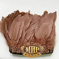 Тесьма перьевая из гусиных перьев,Сoffe , цена за 0.5м