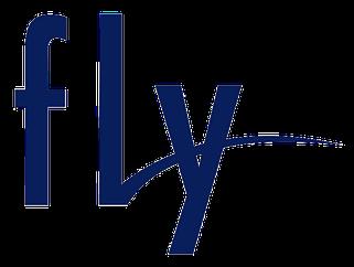 Fly чехлы и аксессуары