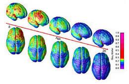 Ментальная арифметика эффективно развивает оба полушария мозга