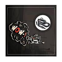 Дизайн логотипа фена для животных (бустера) TIGERS DRYER WOW