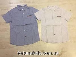 Рубашки для мальчиков Buddy Boy 6-16 лет