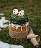 Паска классическая с белковой глазурью и шоколадным декором Пасха