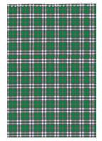 Записная книга блокнот Buromax A4,48 л. клетка карт. обл. спираль зеленый BM.2460-04