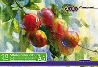 Альбом для рисования ZiBi А5 20л 200г/м2 твердая основа склейка ZB.1982