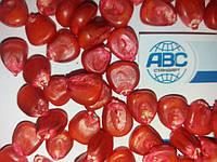 Семена кукурузы ДБ ХОТИН ФАО 260. Высокоурожайный гибрид ХОТИН устойчив к засухе и болезням. Номер №1 в своём сигменте.