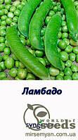 """Горох овощной """"Ламбадо""""  200 000 с  Syngenta"""