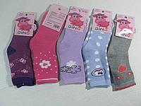 Носки махровые для девочек, размеры 31/34, 35/38, Gino арт.  GT-2206