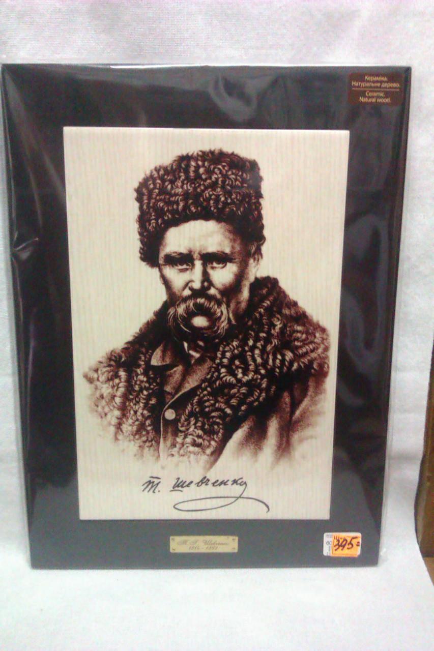 Картина Тарас Шевченко ( 28,5смх38,5см)