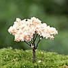 Миниатюрное искусственное дерево бонсай Сакура!