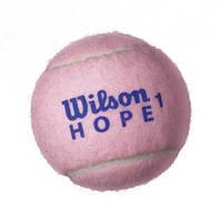Мячи для большого тенниса тренировочные Wilson