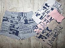 722-1, Bimbi Moda, Трикотажные шорты для девочек, [4 года]