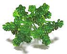 Эониум искусственный 13*13 см, зеленый, фото 2