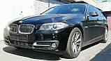 Декоративно-защитная сетка радиатора BMW 5 (F10) фальшрадиаторная решетка (ноздри), бампер, фото 6