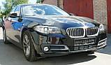 Декоративно-защитная сетка радиатора BMW 5 (F10) фальшрадиаторная решетка (ноздри), бампер, фото 7